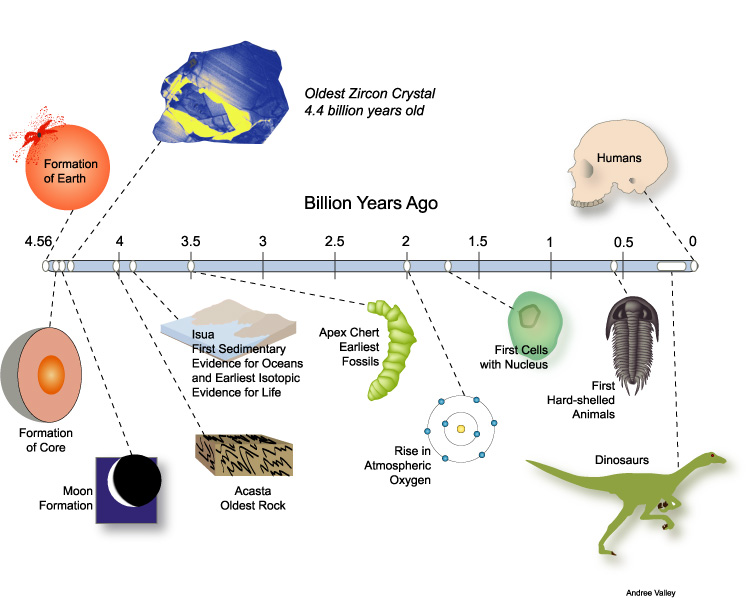 an analysis of human in the history of life on earth It is based on analysis of small sub-unit rrna sequences sampled from about 3,000 species history of life on earth the history of life on earth began about 38.